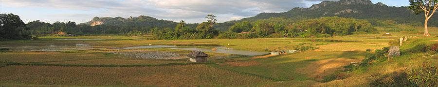 Tana Toraja en Makassar